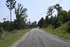 1Pine-Forest-View-Of-Street-Lot-Is-On-The-Right